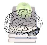 brain_drain3